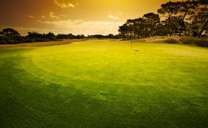 photo of a golf course at sunset